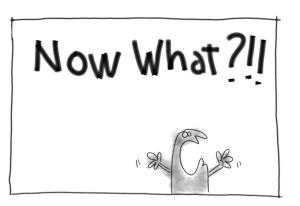 What-now-Y-ahora-que-hacemos
