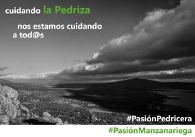 #AmorPedricero1